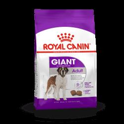 Royal Canin Giant Adult sausas maistas šunims