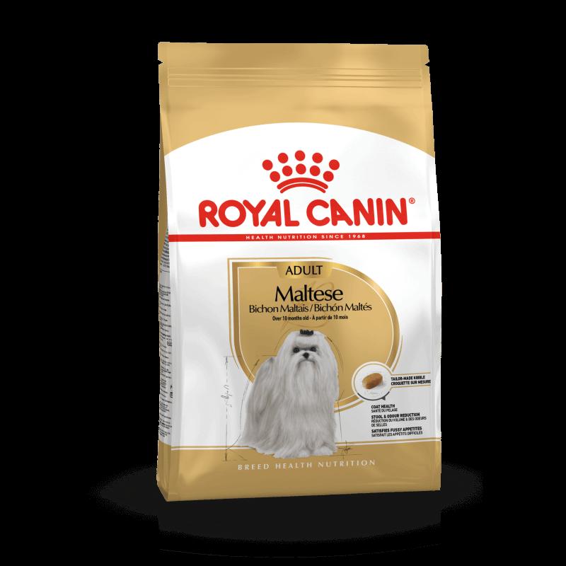 Royal Canin Maltese Adult sausas maistas šunims