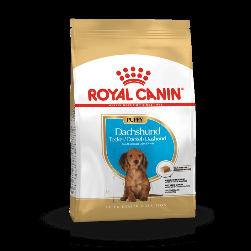 Royal Canin Dachshund Puppy sausas maistas šunims