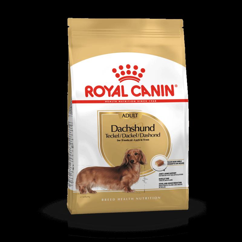 Royal Canin Dachshund Adult sausas maistas šunims
