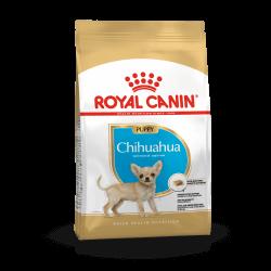 Royal Canin Chihuahua Puppy sausas maistas šunims