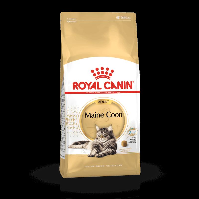 Royal Canin Maine Coon Adult sausas maistas katėms