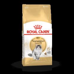 Royal Canin Norwegian Forest Cat sausas maistas katėms
