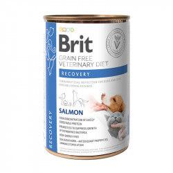 Brit Veterinary Diets Recovery konservai šunims ir katėms