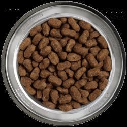 Belcando Adult Grain-Free Beef sausas begrūdis maistas su jautiena šunims