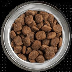 Belcando Adult Power sausas maistas labai aktyviems šunims ar maitinančioms kalėms