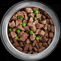 Belcando Mastercraft sauso maisto pagardas su ėriena šunims