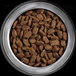 Belcando Mastercraft sausas maistas su 80% grynos jautienos šunims