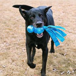 KONG Wubba Comet žaislas šunims
