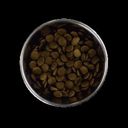Barking Heads Doggylicious Duck sausas maistas su antiena šunims