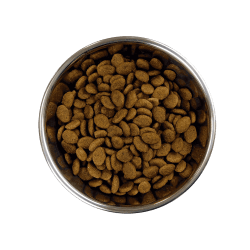 Barking Heads Golden Years sausas maistas vyresnio amžiaus šunims