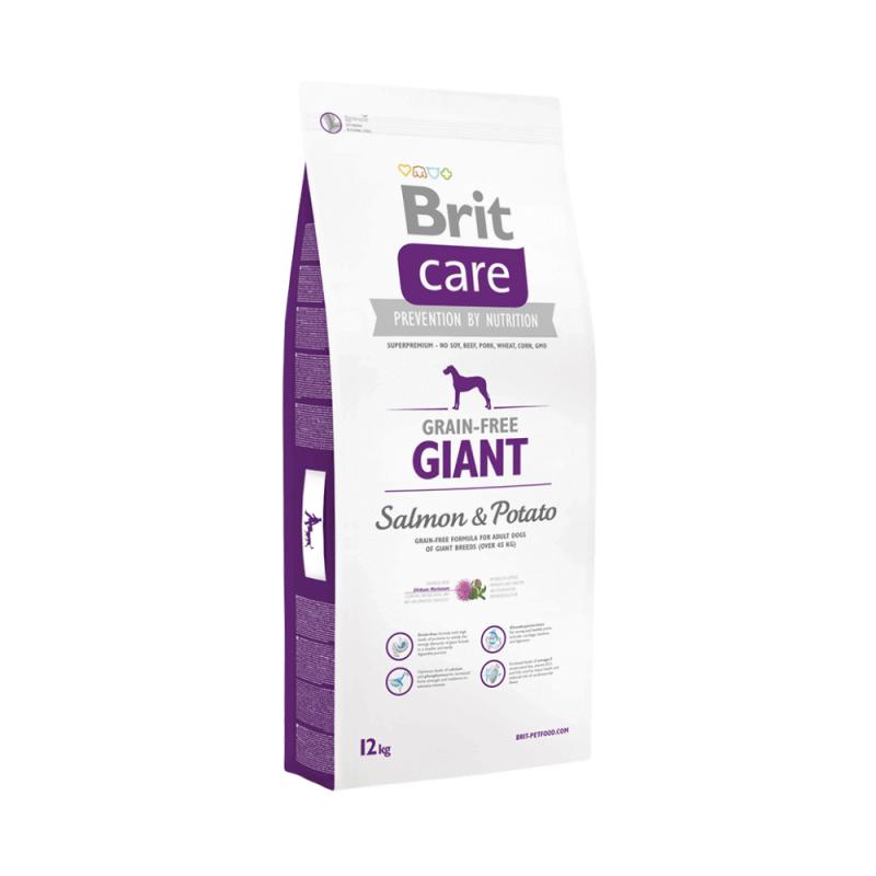 Brit Care Grain-Free Giant Salmon & Potato sausas maistas šunims