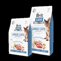 Brit Care Cat Power & Vitality sausas maistas didelių veislių katėms