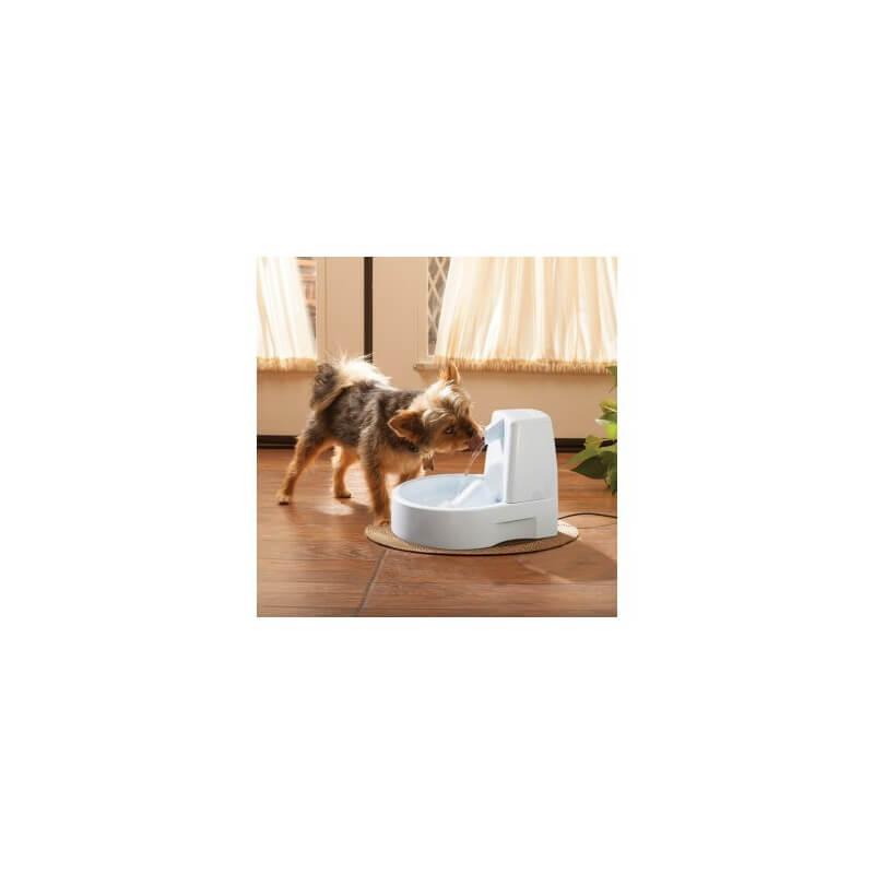 PetSafe Drinkwell girdykla-fontanas mažiems bei vidutinio #3