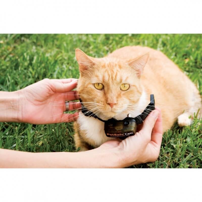 PetSafe papildomas antkaklis prie nematomų tvorų katėms