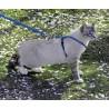 PetSafe petnešos su tampriu pavadėliu katėms #4