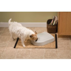PetSafe Eatwell automatinė šėrykla šunims ir katėms