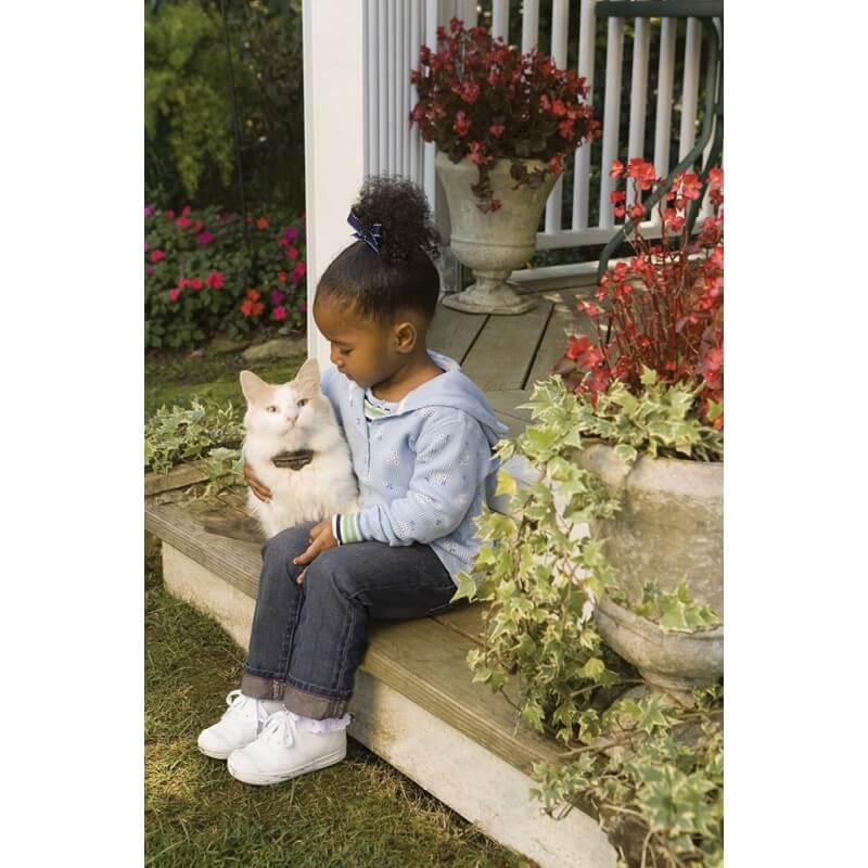 PetSafe nematoma tvora katėms #2