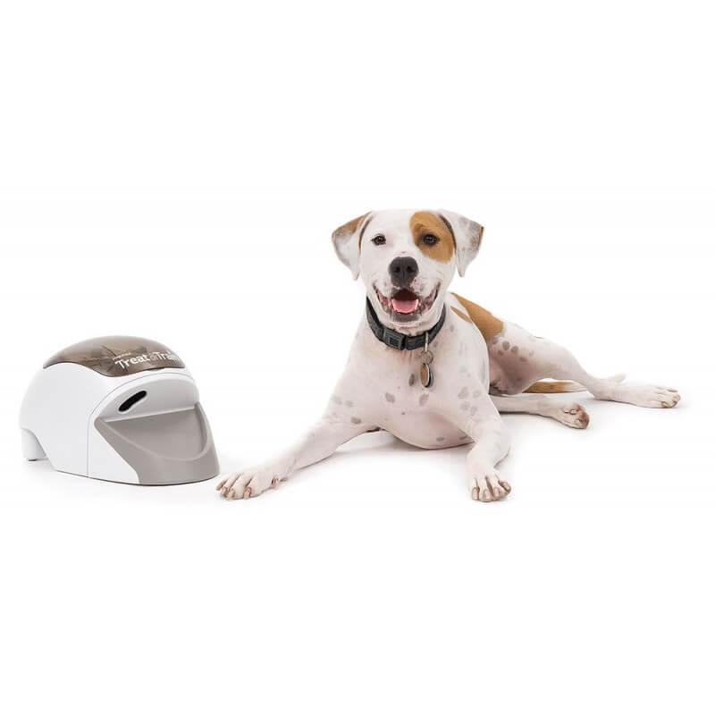 Petsafe Treat & Train dresavimo priemonė šunims