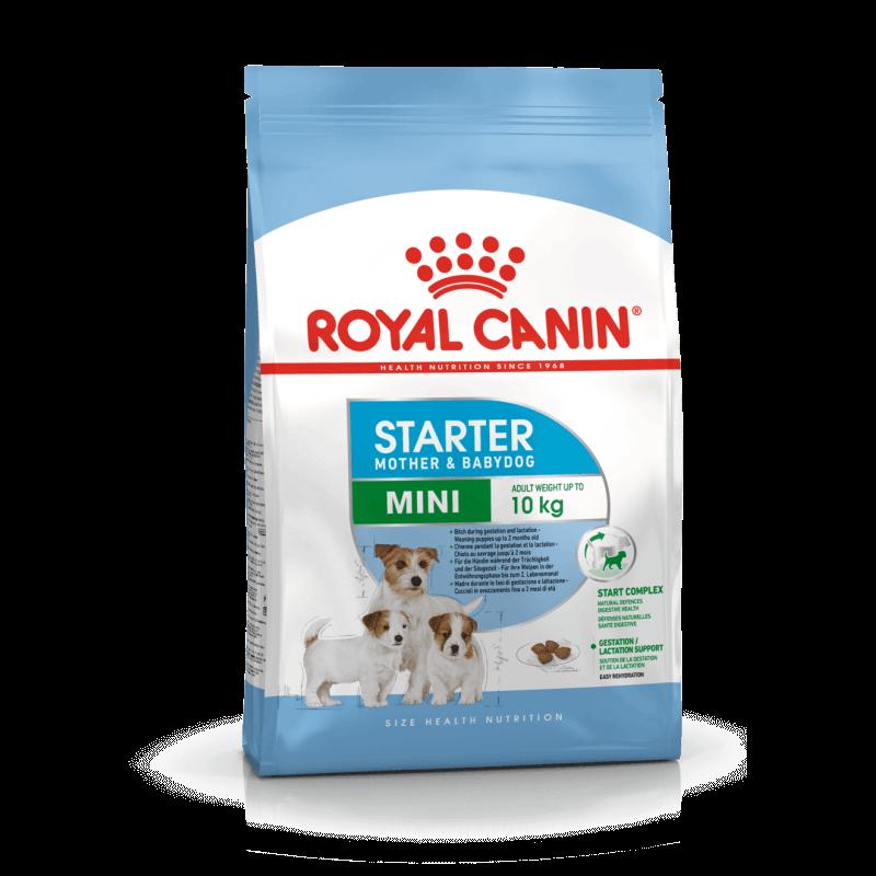 Royal Canin Mini Starter sausas maistas šunims