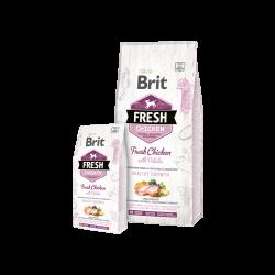 Brit Fresh Chicken With Potato Puppy sausas maistas šuniukams
