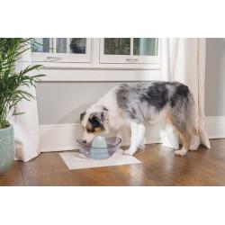 PetSafe Sedona keramikinė girdykla šunims ir katėms