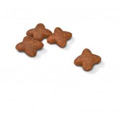 Royal Canin Mini Adult sausas maistas šunims #2