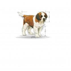 Royal Canin Giant Puppy sausas maistas šunims