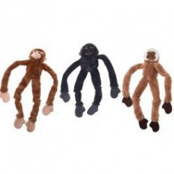 Ethical Products žaislas Skinneez bezdžionė šunims