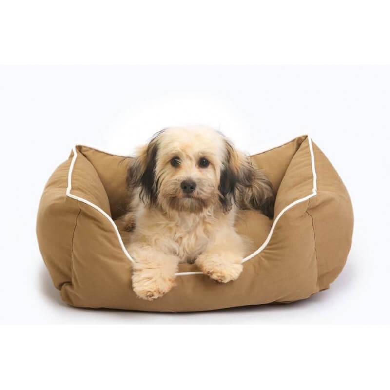 Dog Gone Smart Guolis šunims ir katėms #2