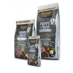 Belcando Puppy GF Poultry begrūdis sausas maistas su naminių paukščių mėsa jauniems šuniukams