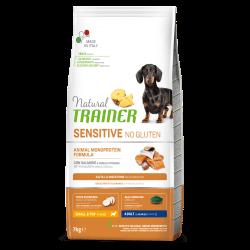 Natural Trainer Adult Mini No Gluten Salmon Maize sausas