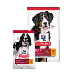 -20% nuolaida Hill's SP vištienos skonio sausam maistui suaugusiems šunims ir katėms