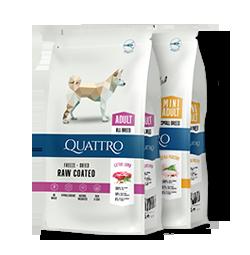 -20% nuolaida visoms didelėms Quattro sauso šunų maisto pakuotėms